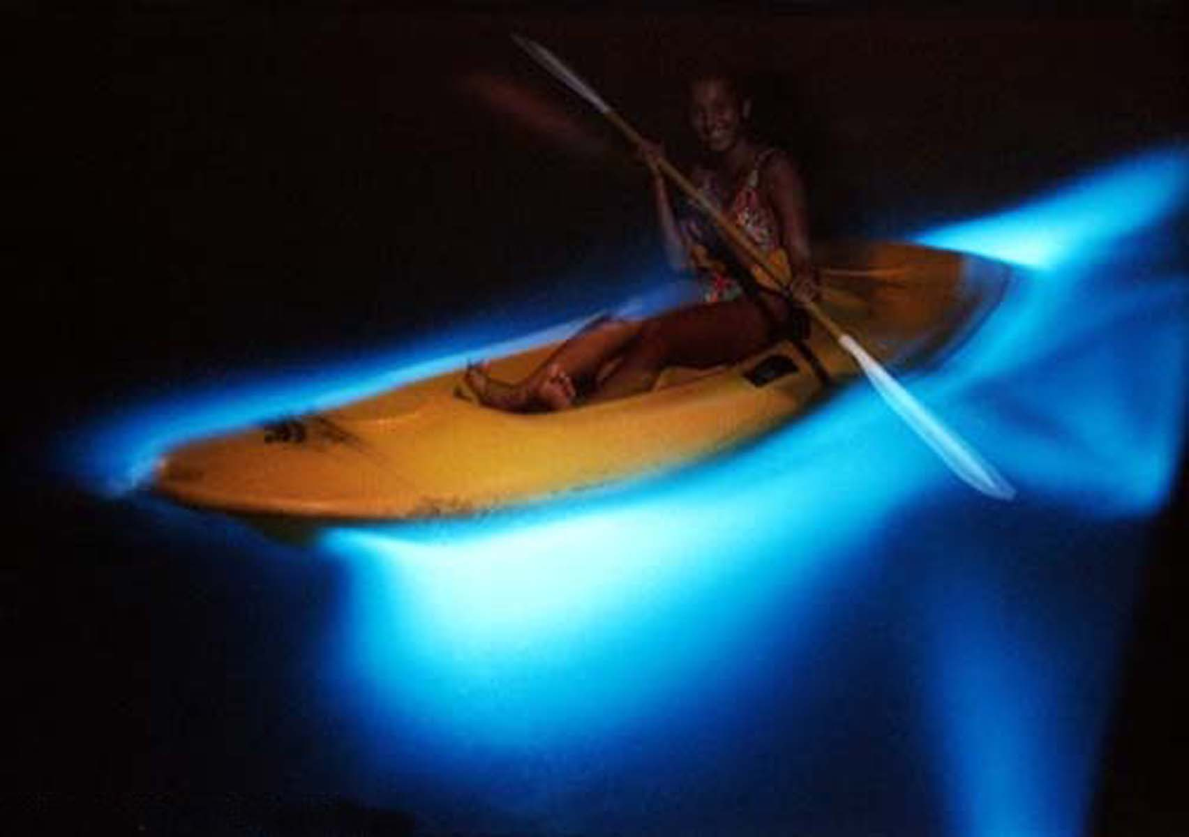 Luminous-Lagoon-in-Jamaica