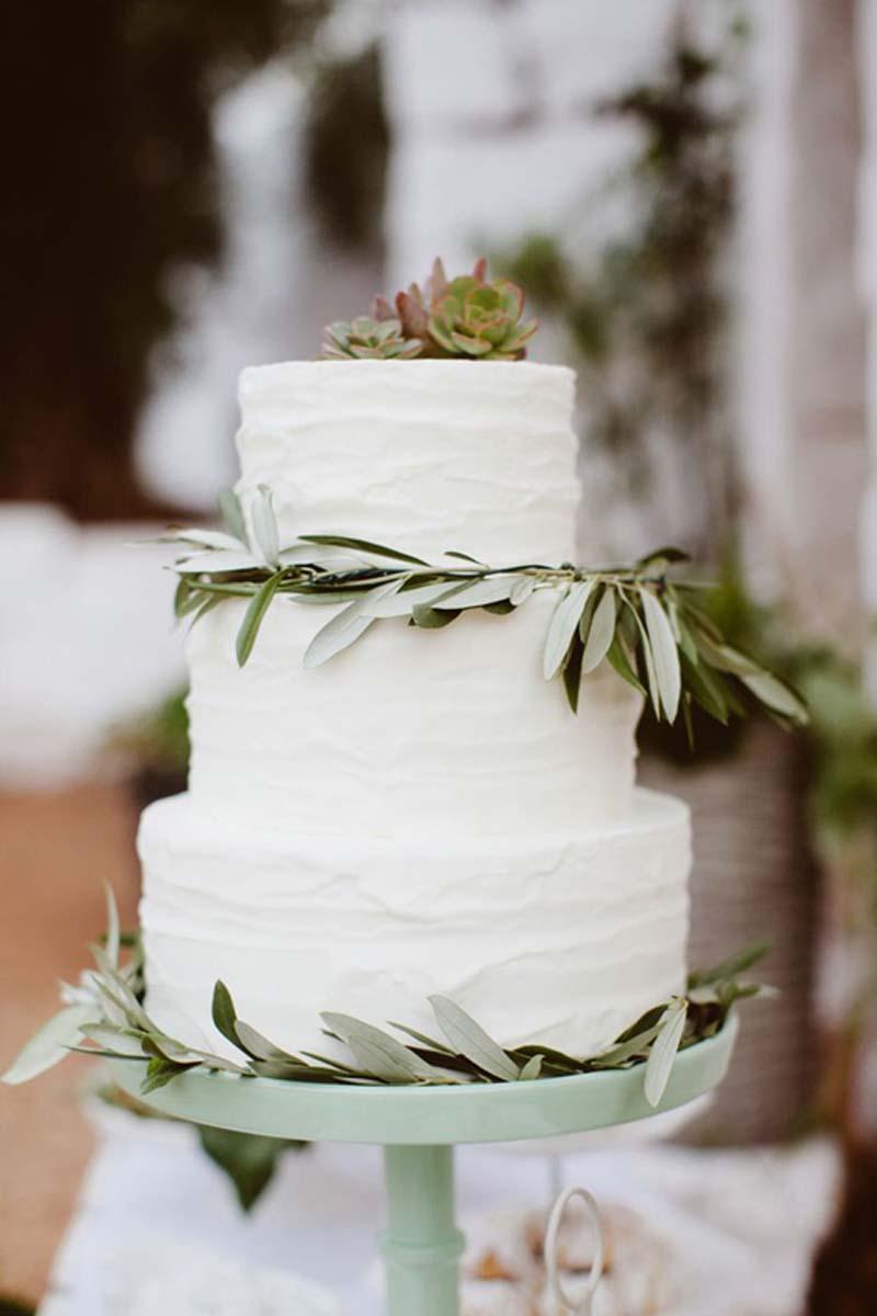 Olivo en tu boda