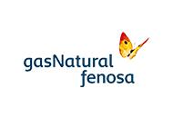 Gas_Natural